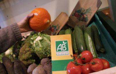 Consommez des fruits et légumes BIO